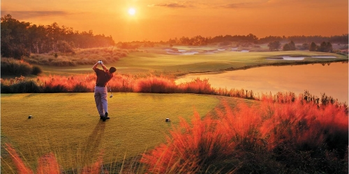 Golf Travel Insider
